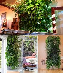 hanging wall planters indoor u2013 voqalmedia com