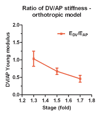 the interplay of stiffness and force anisotropies drives embryo