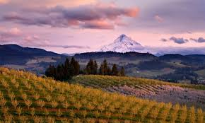 Oregon travel info images Hood river oregon travel guide trip planning info alltrips jpg
