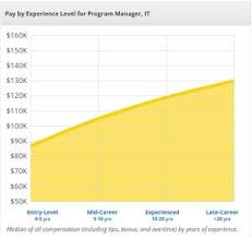 it program manager job description salary overview for project management professional pmp