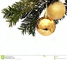 two golden decorations hanging from a tree royalty free