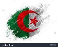 Algerian Flag Algeria Algerian Flag Painted Brush On Stock Illustration
