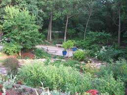 native plants of kansas overland park arboretum and botanical gardens near kansas city