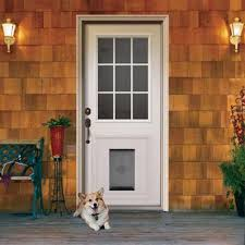 door inspiring doggy door ideas dog door home depot doggie doors