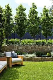 home depot front yard design natural fence landscaping ideas mosman landscape design outdoor