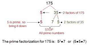 factor trees prime factorization