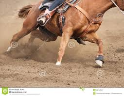 flying horse stock photos images u0026 pictures 971 images