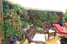 privacy garden screening ideas outdoor privacy screen wall