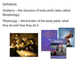anatomy and physiology workbook answers chapter 1 anatomy answer