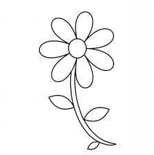 flower outline coloring page free stock photo public domain pictures