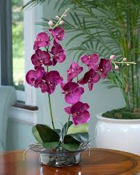 silk orchids enhance your room decor with phalaenopsis silk orchid arrangement