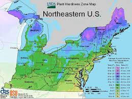 northeastern cus map maps for growing zones from the usda how cold it gets