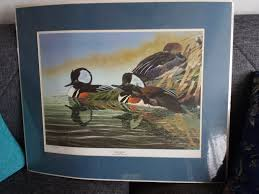 Ducks Unlimited Home Decor Vintage 1990 Ducks Unlimited Print Hairy Heads By Gerald W