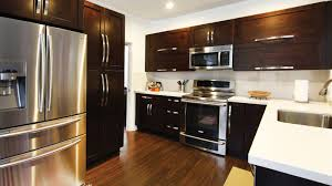 Kitchen Cabinets Tampa Fl by Kitches Gallery
