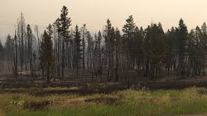 Prince George Bc Wildfire by Aggressive U0027 Weather Could Spark More Fires In The Interior News 1130