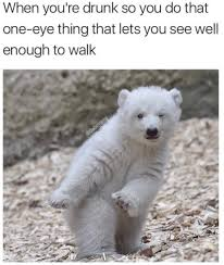 Funny Memes Animals - 45 funny animal memes that ll make you laugh till you cry