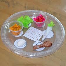 what is on a passover seder plate 15 diy passover seder plates your kids will to make