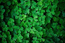 st patrick wallpapers group 73
