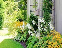 pergola gardens awesome trellis plants awesome inspirations to