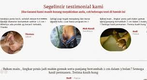 agen jual pil klg asli korea selatan distributor obat klg korea