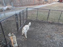 flooring cheap kennel flooring ideas outdoor materialdog
