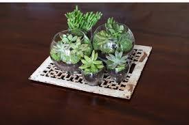 creative terrarium ideas for your home my journey