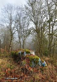 vw schwimmwagen found in forest 1010 best rest makes rusty images on pinterest abandoned cars