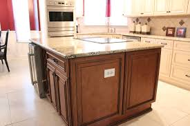 Two Tone Kitchen Cabinet Doors Fabuwood Wellington Ivory Wellington Cinnamon Wellington Door
