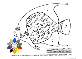 adventure swim fish coloring pages
