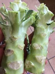 cuisiner le brocolis frais comment cuisiner les pieds de brocoli recettes anti gaspillage