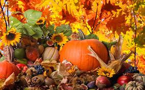 thanksgiving wallpaper qygjxz