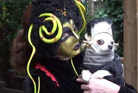 creepy costumes dogs dress in costumes for london event upi