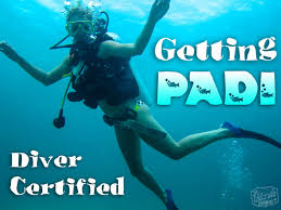 getting padi diver certified u2022 the blonde abroad