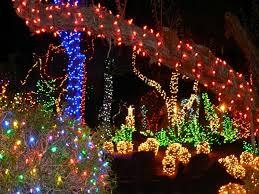 outdoor tree lights home interior plans ideas
