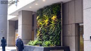 gallery plants on walls