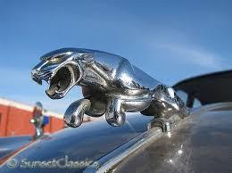 255 best jaguar images on jaguar jaguar cars and