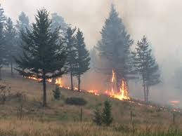 Wildfire Bc Area by Hanceville Riske Creek Wildfire Could Be Burning In Spots Until