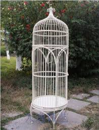 How To Decorate A Birdcage Home Decor Large Birdbrains Tieyi French Birdcage Outdoor Bird Cage