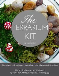 resume modernos terrarios suculentas más de 25 ideas increíbles sobre kits de terrario en pinterest