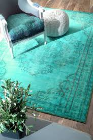 Rugs With Teal 31 Best Area Rugs Images On Pinterest Teal Rug Area Rugs And
