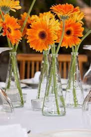 Vase Table Centerpiece Ideas Best 25 Gerbera Daisy Centerpiece Ideas On Pinterest Gerbera