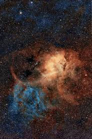 sunflower galaxy sponli news part 82
