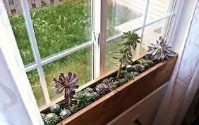 Window Sill Garden Inspiration Windowsill Succulent Garden Kitchen Window Sill Window Sill And