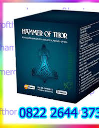 agen hammer of thor di ambon 082226443731 by vinda farma