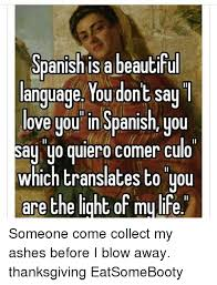 How To Say Thanksgiving In Spanish 25 Best Memes About I Love You In Spanish I Love You In