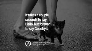 Saying Goodbye Love Quotes by 40 Quotes On Getting Over A Break Up After A Bad Relationship