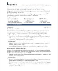 It Executive Resume Samples by Internet Marketer Resume Samples U0026 Examples