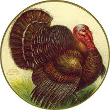 thanksgiving turkey free clip from vintage crafts