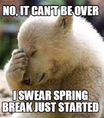 Funny Bear Memes - meme maker no it cant be over i swear spring break just started