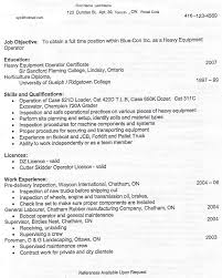 Resume Template Usa Best Solutions Of Sle Resume In Usa With Additional Summary